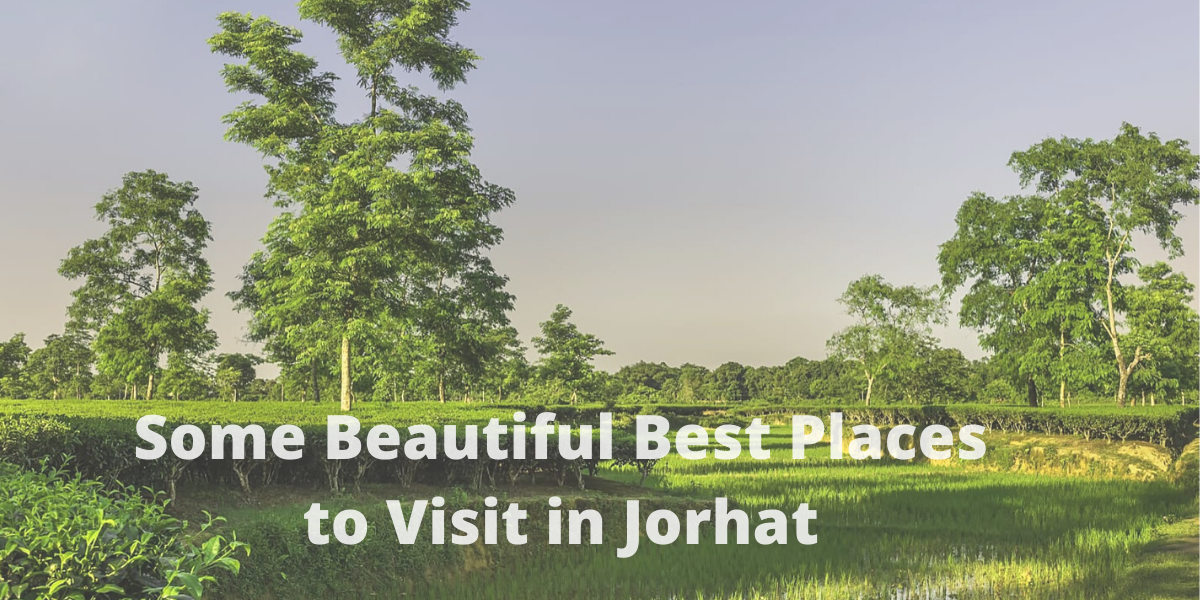 Some Beautiful Best Places to Visit in Jorhat