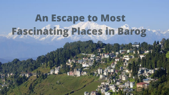 An Escape to Most Fascinating Places in Barog