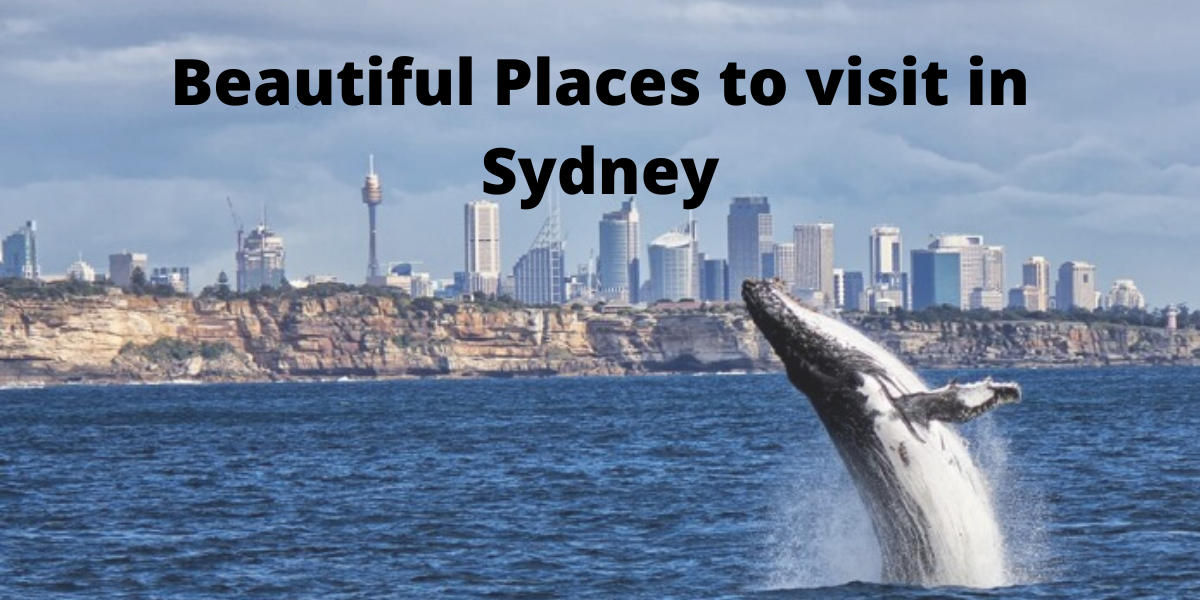 Beautiful Places to visit in Sydney